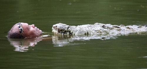 Дружба крокодила и человека (4 фото)
