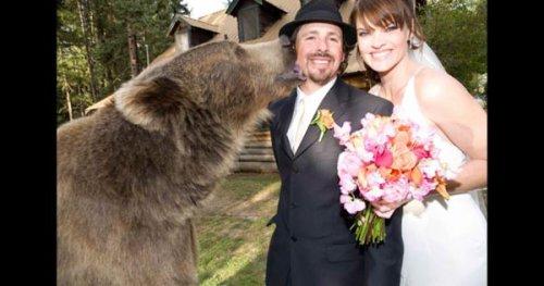 Человек и медведь - друзья.