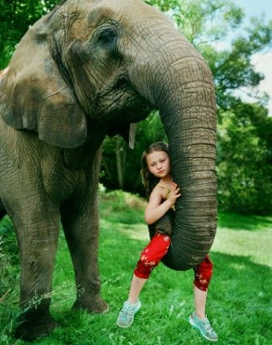 Эти забавные животные (24 фото)