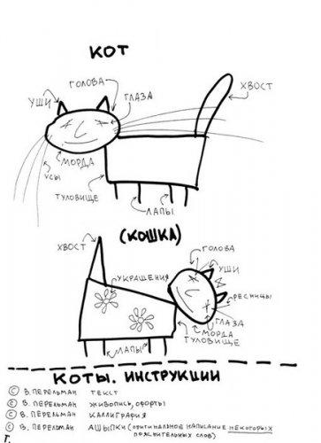 О котах - в картинках.