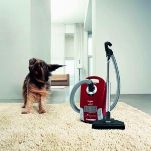 Животные и чистота в доме. Как совместить?