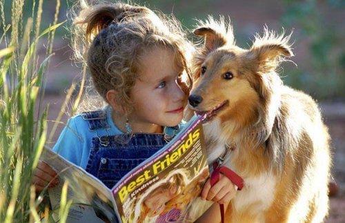 Собаки и маленькие детки (17 фото)