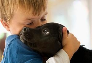 Мама, хочу собаку!