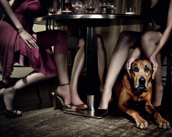фото под столом между женских ног