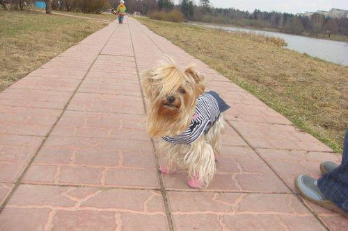 Маленькая модница (14 фото)