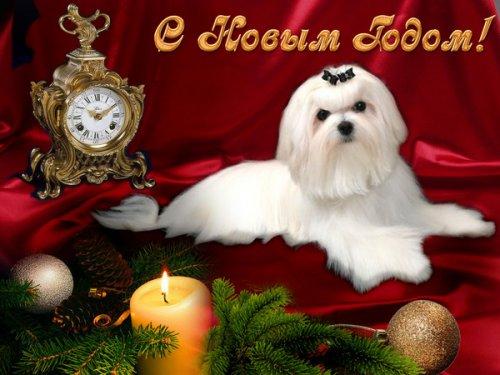 Новогодние открытки (38 фото)