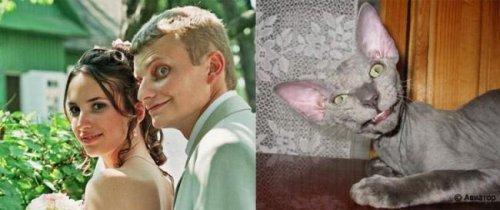 Люди так похожи на животных (22 фото)