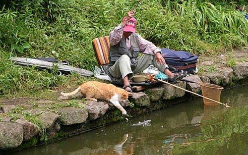 Ловись,ловись рыбка! (26 фото)