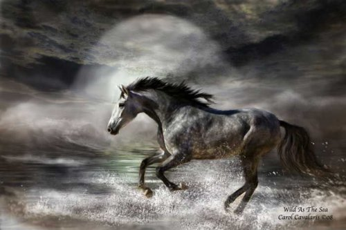 Лошади (15 фото)