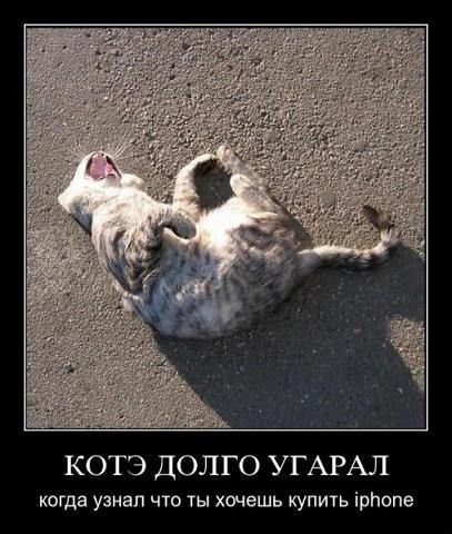 → демотиваторы про животных 18 фото