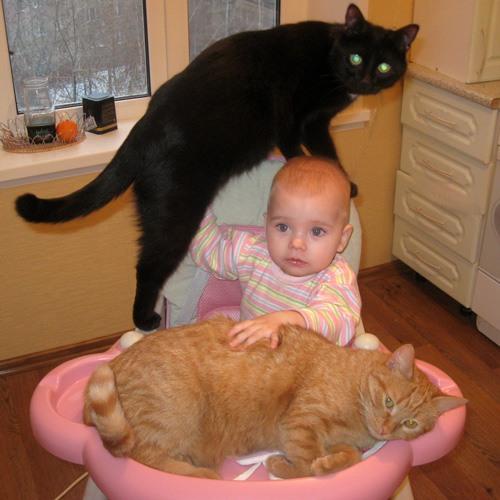 Картинки про детей и котов с надписями