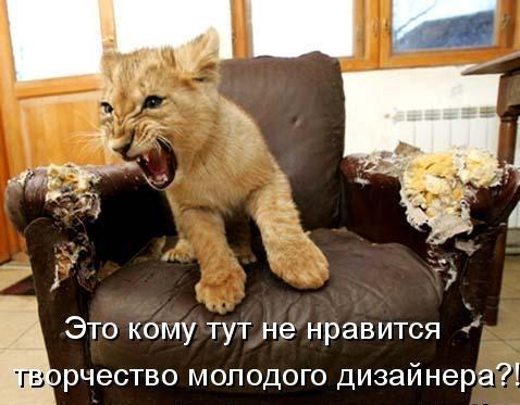 Весёлая котоматрица (45 фото)