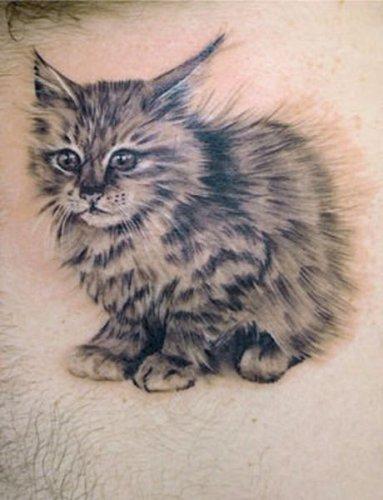 Тату кошки (18 фото)