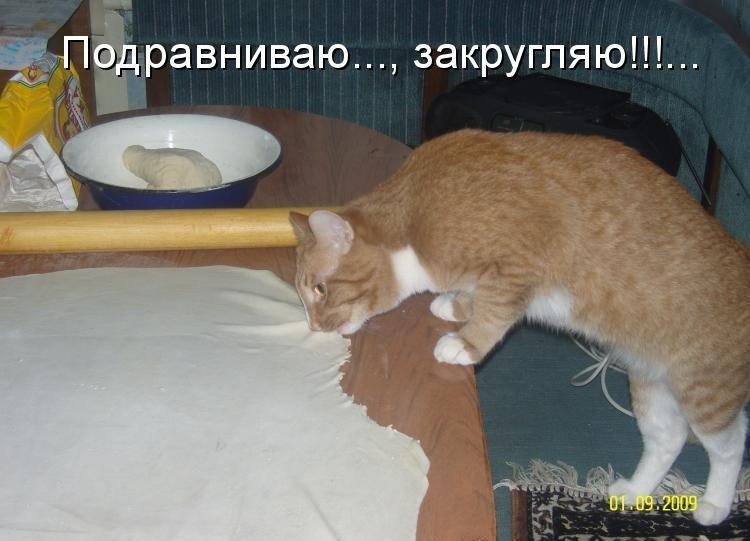 https://klopik.com/uploads/posts/2010-10/1285933346_682606.jpg