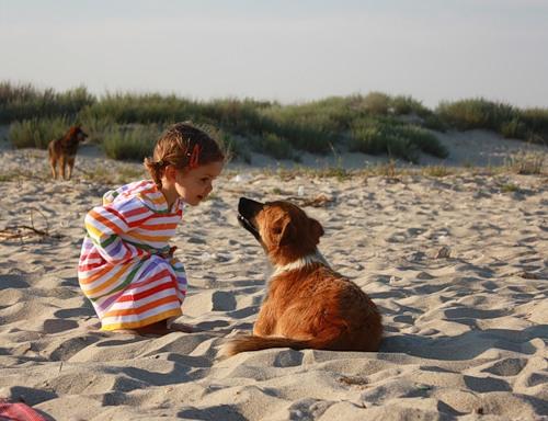 Дети и животные (32 фото)