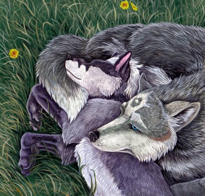 Картинка волк спит для детей