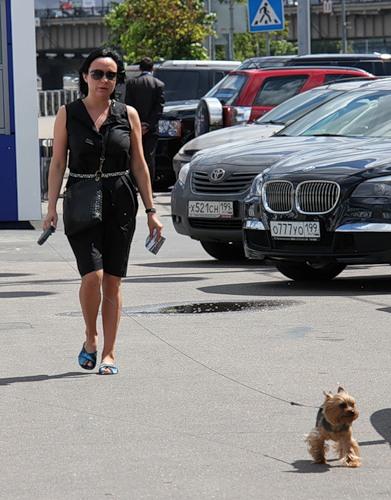 Дама с собачкой (30 фото)