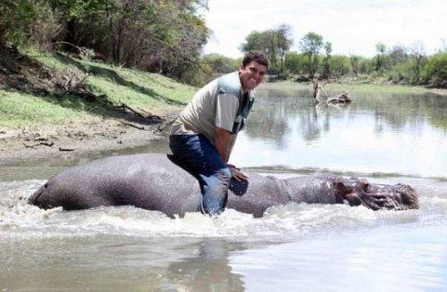 Необычная дружба фермера с бегемотом (4 фото)