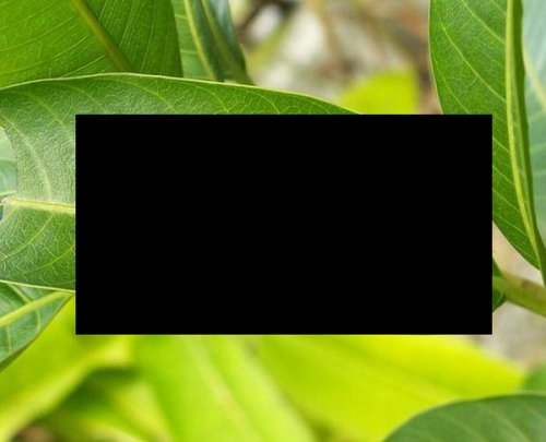 Вы что-то видите? (2 фото)