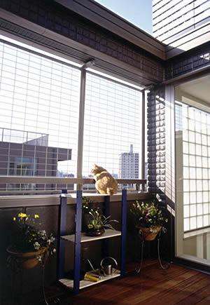 Кошачий рай от компании Asahi Kasei (10 фото)