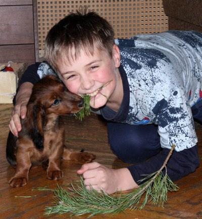 Дети и животные (25 фото)