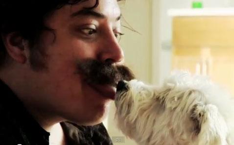 Школа французских поцелуев для собак