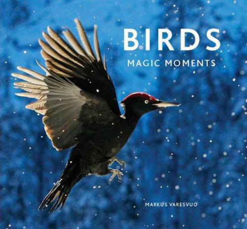 Неотразимые моменты из жизни птиц (24 фото)