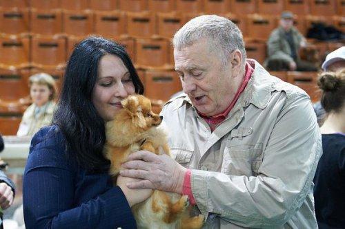Владимир Жириновский на выставке собак (12 фото)