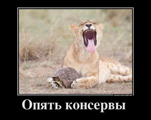 Демотиваторы про животных (22 фото)