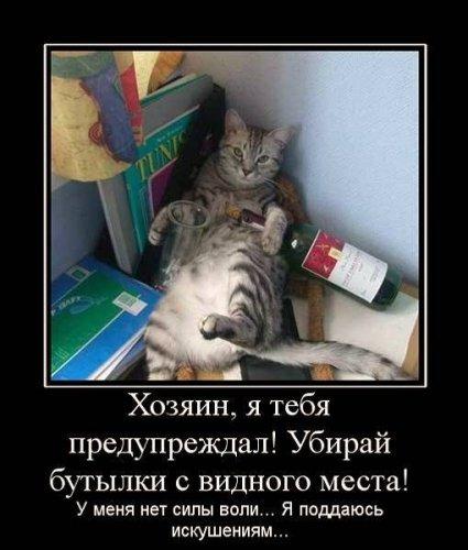 Демотиваторы с участием животных (20 фото)