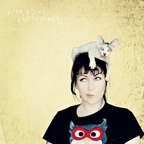 Кошки-шапки:) (37 фото)