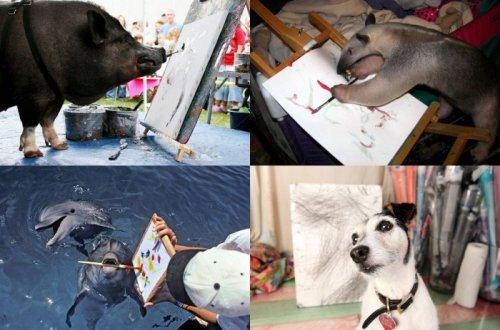 Десятка известных животных-художников (10 фото)