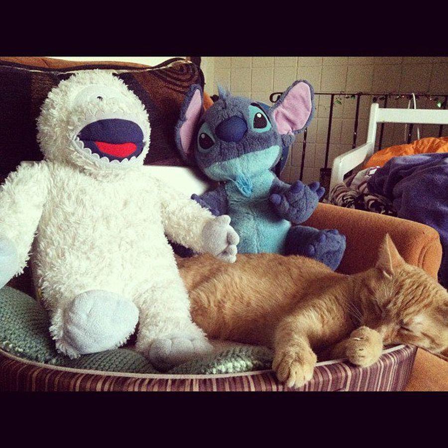 Их игрушки самое интересное в блогах