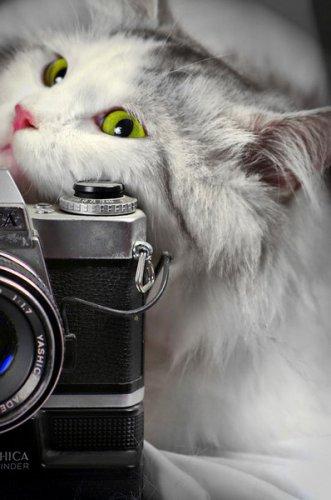 Улыбнитесь! Вас снимает видеокамера.