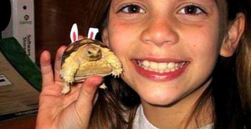 Девочка и черепаха (2 фото)