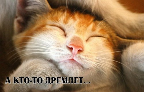 "Юмор:  Про тех, кто ""любит"" свою работу (10 фото)"