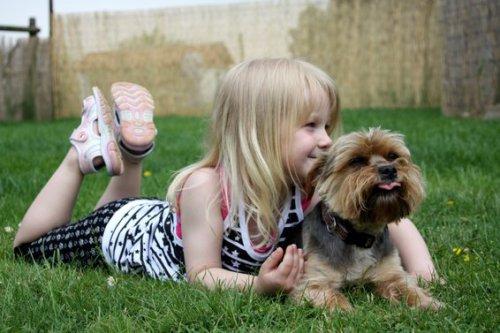 Чему научат ребенка домашние животные