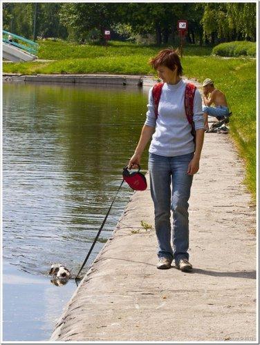Вот как надо выгуливать собаку (4 фото)