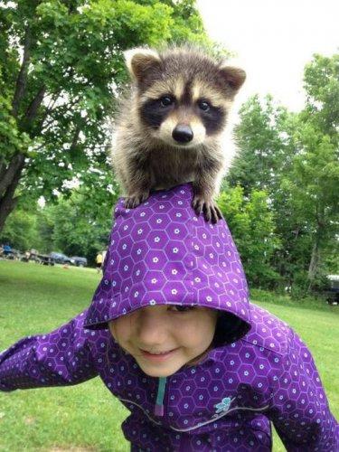 Позитив от животных (25 фото)
