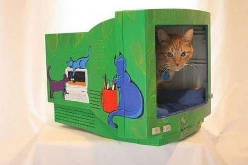Мебель для кошек (19 фото)