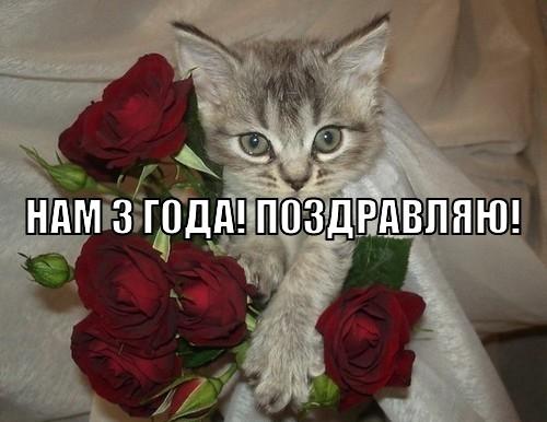 НАШЕМУ САЙТУ 3 ГОДА!