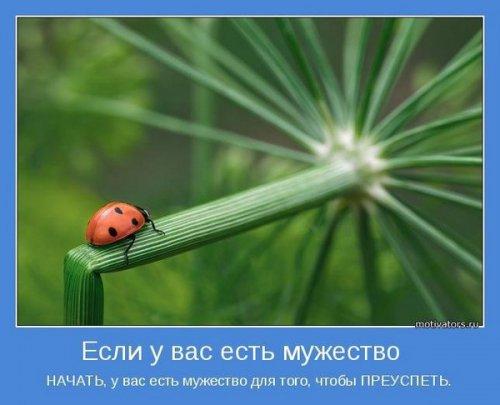Позитивные мотиваторы (25 фото)