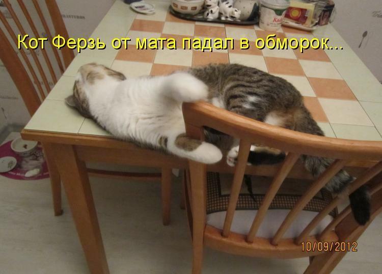 Голодный обморок смешные картинки, мамам марта