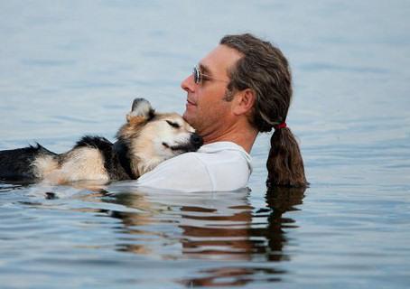 Американец ежедневно носит больного пса к озеру, чтобы тот отдохнул (3 фото+видео)