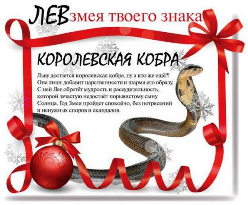 Змея твоего знака в 2013 году