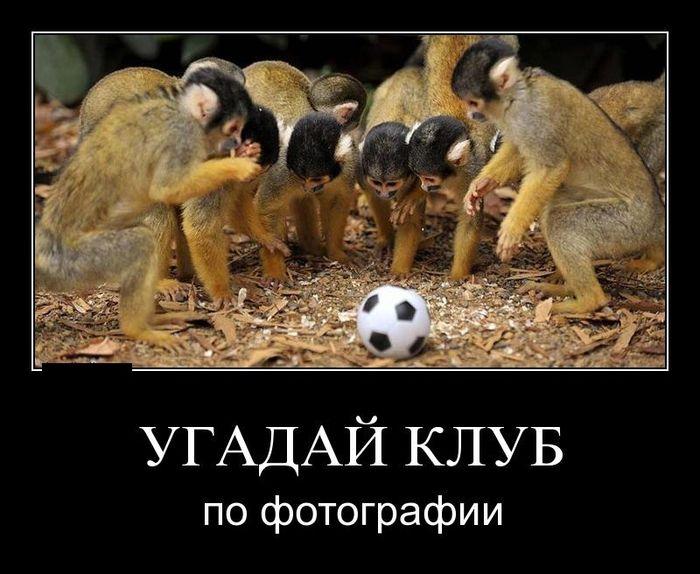 Наша сборная по футболу приколы картинки