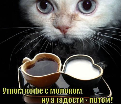 http://klopik.com/uploads/posts/2013-02/1361386322_0.jpg