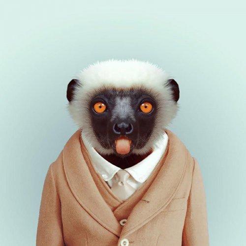 Юмор: Забавные портреты животных в человеческом образе (26 фото)