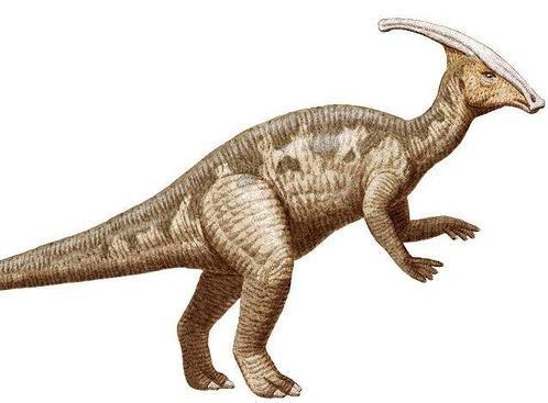 Мир динозавров (36 фото)
