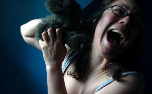Девушки и животные (35 фото)